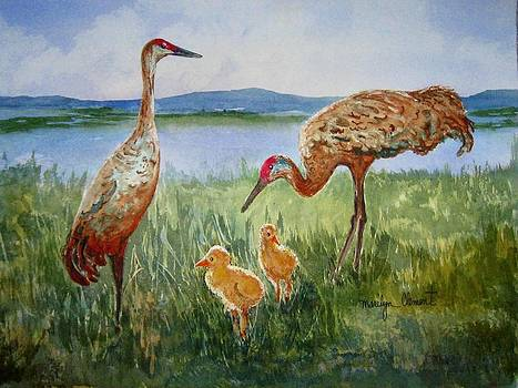 Crane Family by Marilyn  Clement