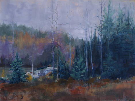 Crane Mountain By the Pond by Terri Messinger