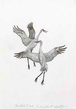 Michael Earney - Cranes
