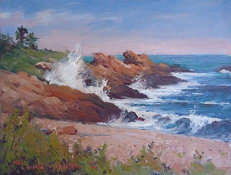 Crashing on Bass Rocks by Dianne Panarelli Miller