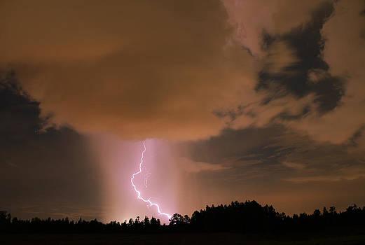 Tail of the Storm by Matt Merritt