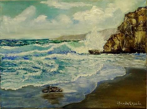 Crashing waves by Juan Sandin
