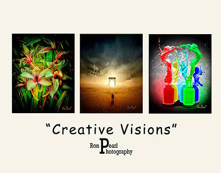 Creative Visions #2 by Ron Pearl