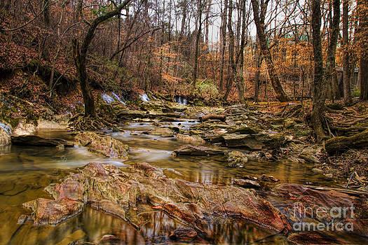 Barbara Bowen - Creek at Leflers Mill