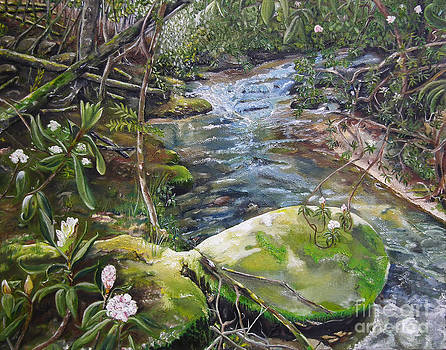 Creek -  Beyond the Rock - Mountaintown Creek  by Jan Dappen