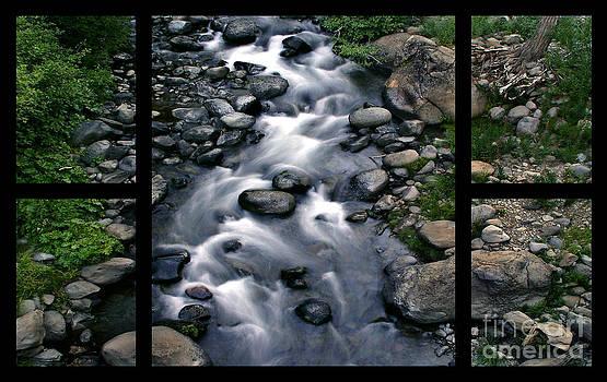 Peter Piatt - Creek Flow Polyptych