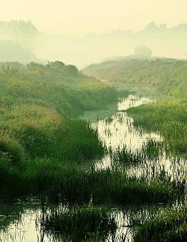 Creek I by Sarah Boyd