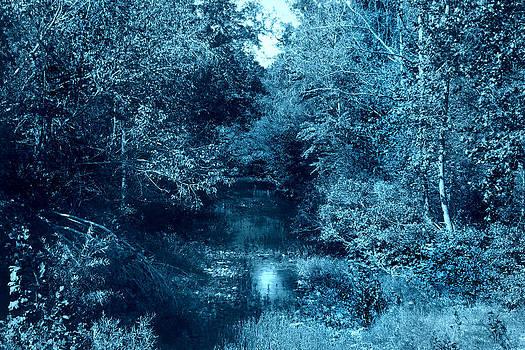 Nina Fosdick - Creek in Blue