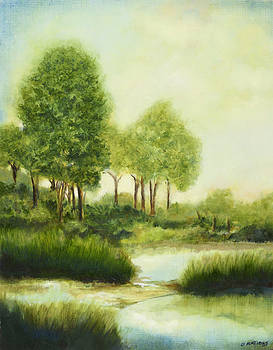 Creek in the Spring by Diane Nations
