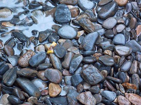 Creek Rocks by Annette Allman