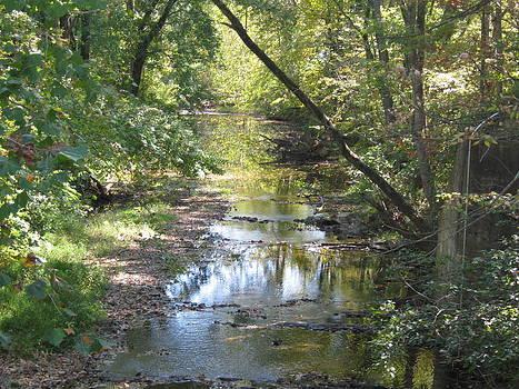 Creek by Sarah Manspile