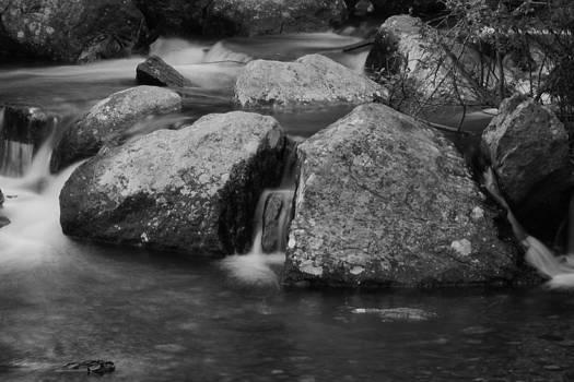 Creek by Steve ODonnell