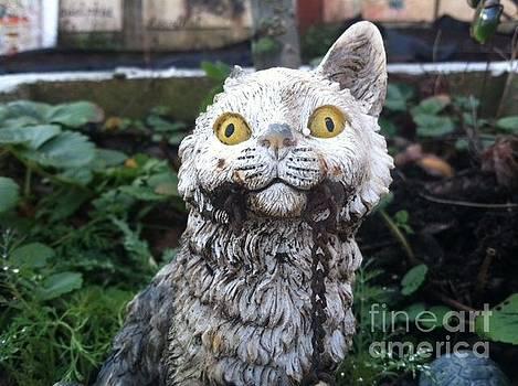 Creepy Cat by Kate Koehn