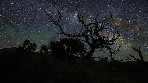 Creepy Galaxy by Jesse Attanasio