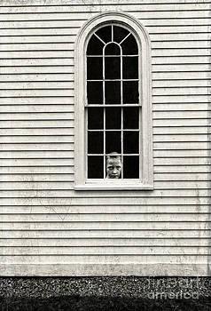 Edward Fielding - Creepy victorian girl looking out window
