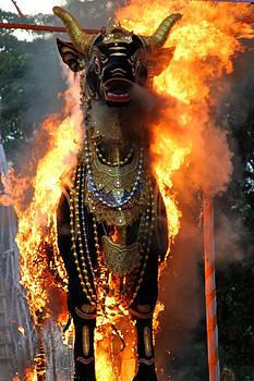Venetia Featherstone-Witty -  Balinese Burning Bull