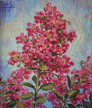 Crepe Myrtle by Henry David Potwin