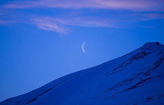 Crescent Moon by Emily Henriques