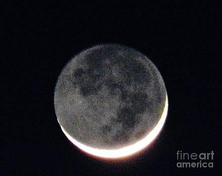 Judy Via-Wolff - Crescent Moon in Winter
