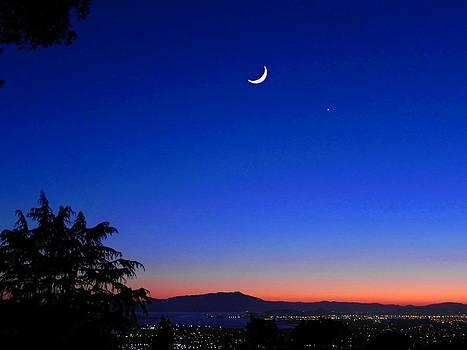 Crescent Moon San Francisco Bay by Diane Lynn Hix
