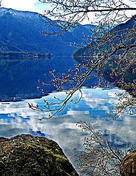 Lynn Bawden - Crescent Reflections