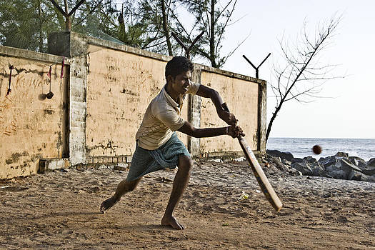 Cricket by Sonny Marcyan