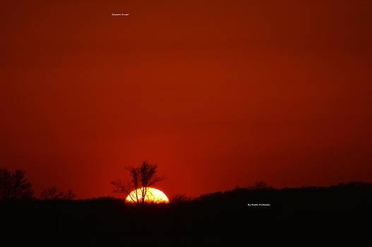 Crimson Sunset by Ralph Dickerson