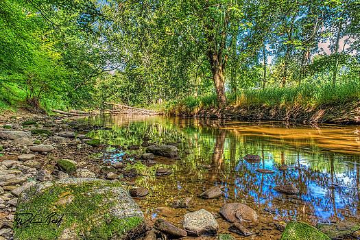 Crockery Creek by William Reek