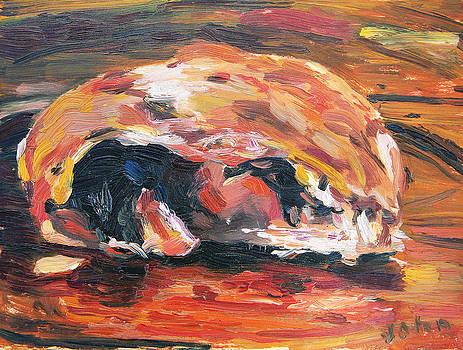Croissant by John Matthew