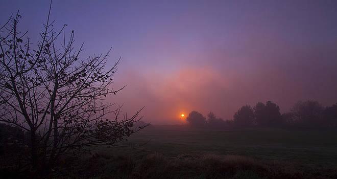David French - Cromer Sunrise