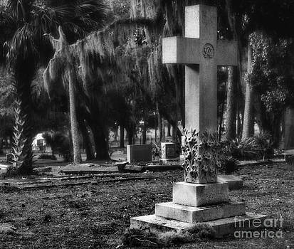 Wayne Nielsen - Cross Iluminates Cemetery Ground