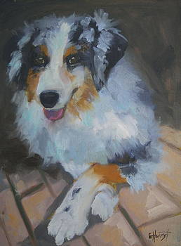 Crossed Paws by Elaine Hurst