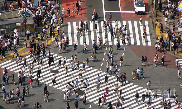 Crosswalks by Carolyn Kami Loughlin