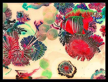 ArtWaters.com Fish by Daniel Bohnett