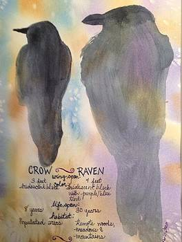 Crow and Raven by Pat Butera