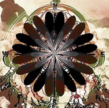Crow Medicine by Brigita Tekavcic