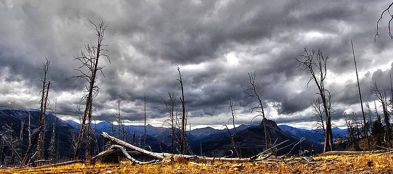 Crow Peak by Stephanie Thomson