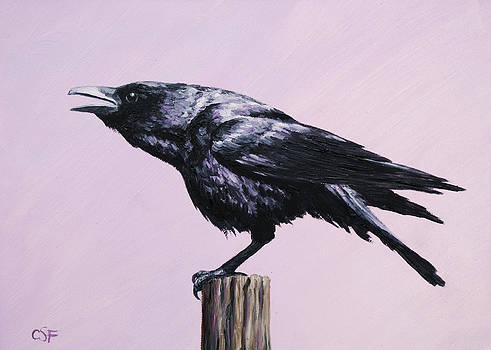 Crow - Sounding Off by Crista Forest