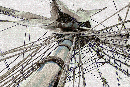 Crows Nest by James Gray