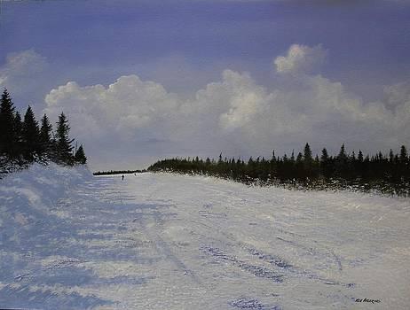 Cruising by Ken Ahlering