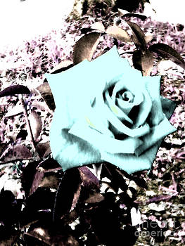 Crystal Blue by Aiko Bartley