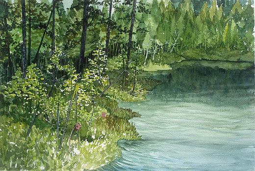 Crystal Bog by Helen Klebesadel