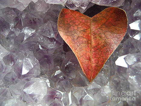 Paddy Shaffer - Crystals Amplify Love