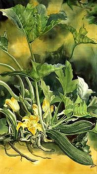 Alfred Ng - Cucumbers in the garden