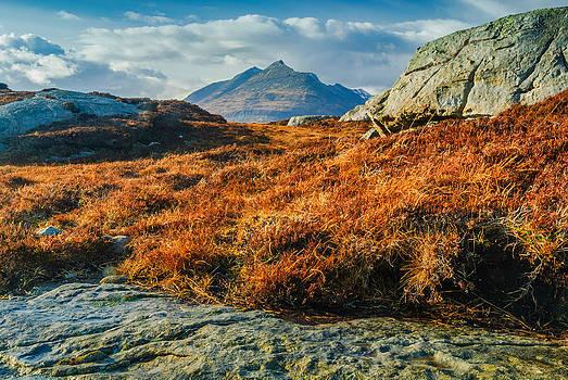 David Ross - Cuillin Hills from Elgol Isle of Skye