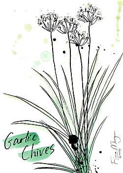 Culinary Herbs - Garlic Chives by Fiona Morgan
