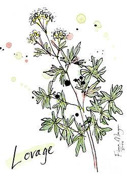 Culinary Herbs - Lovage by Fiona Morgan