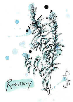 Culinary Herbs - Rosemary by Fiona Morgan
