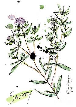 Culinary Herbs - Savory by Fiona Morgan