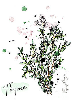 Culinary Herbs - Thyme by Fiona Morgan